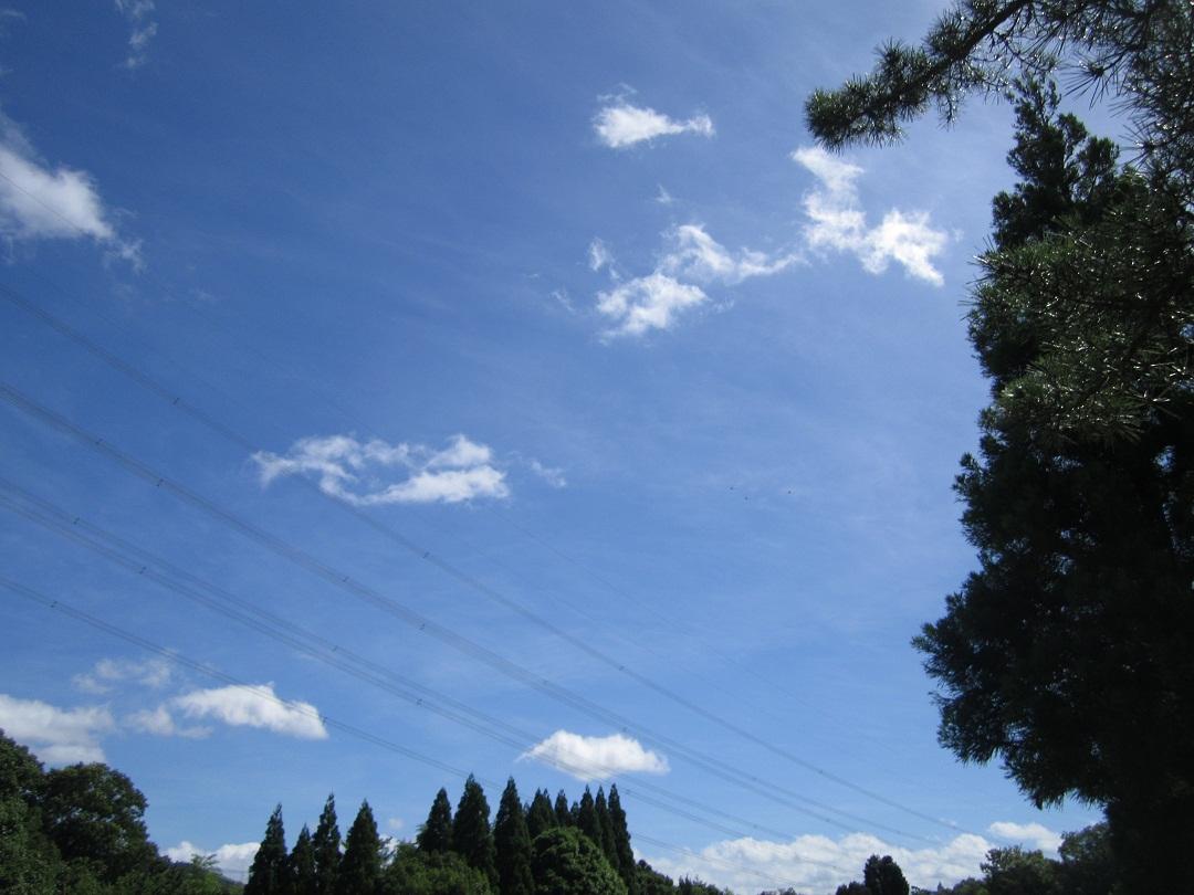 梅雨明けのゴルフ_f0205367_23383361.jpg