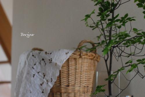 夏のフルーツタルトにラタトゥユ_d0091671_8371585.jpg