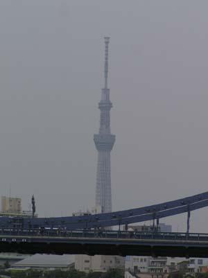 久しぶりに東京で見たこと_f0211178_18571165.jpg