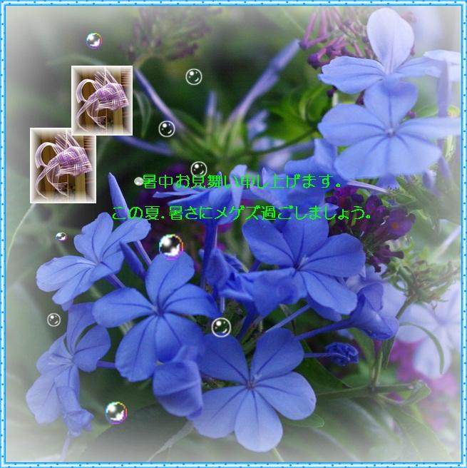 d0028304_12375136.jpg