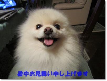 b0167519_925204.jpg