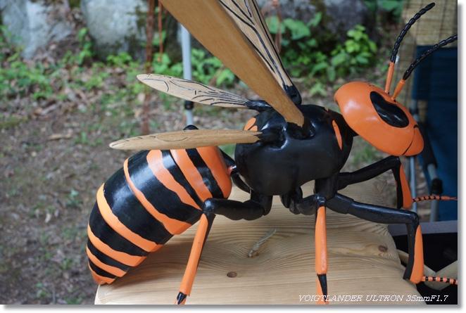 ハチのひと刺し_c0054876_174319.jpg