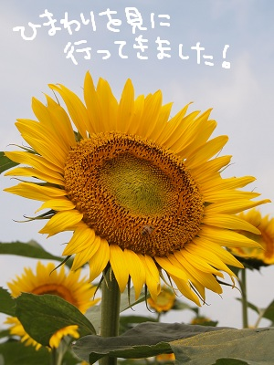 b0092580_034107.jpg