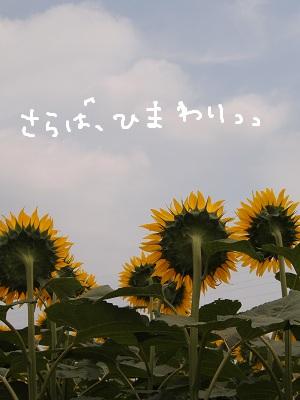 b0092580_141969.jpg