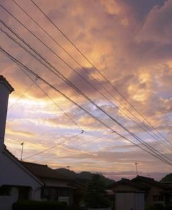 久しぶりに、夕方の空を見上げて。_e0188087_22561089.jpg