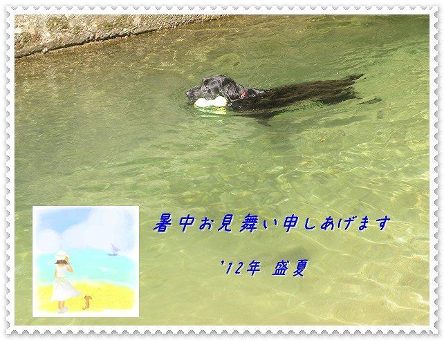 f0176499_22292947.jpg