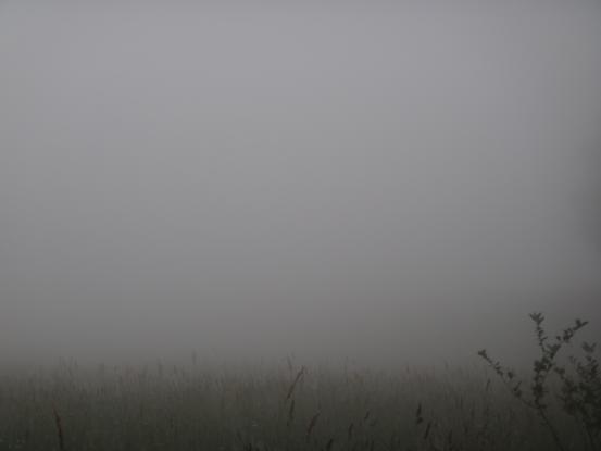 雲の中_f0064906_16572745.jpg
