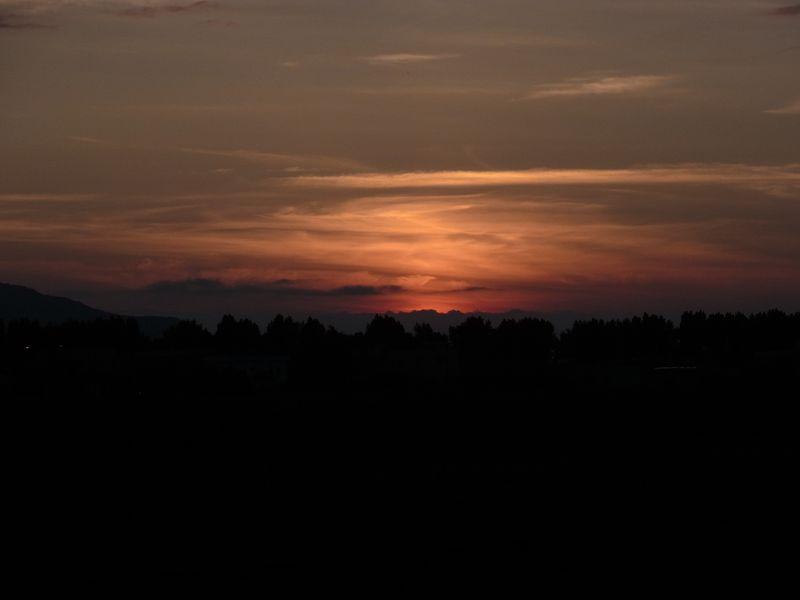ポプラ並木の落日_c0025115_207501.jpg
