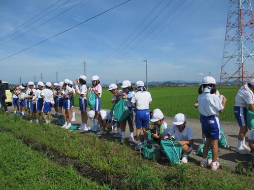 暑い中大豆の草取りです。_e0061225_17194443.jpg