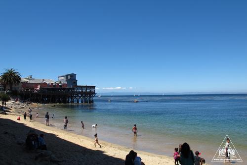 244 Monterey Bay Aquarium ~モントレーベイ水族館~_c0211532_2356348.jpg