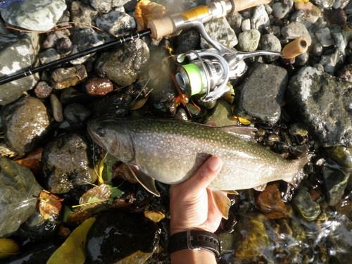 ・FISHING REPORT_a0165135_17563345.jpg