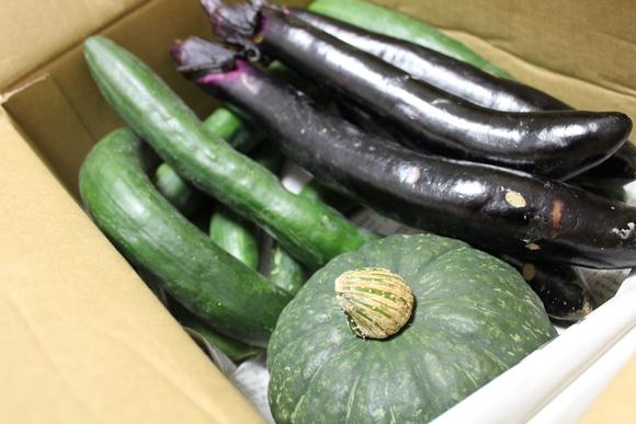 新鮮野菜到着_d0227044_17111615.jpg