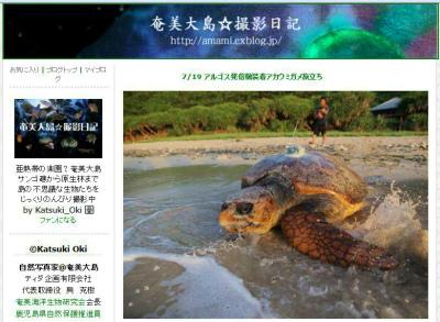 加計呂麻島関連ウミガメ産卵情報_e0028387_2323954.jpg