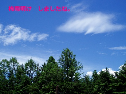 b0200310_19325439.jpg