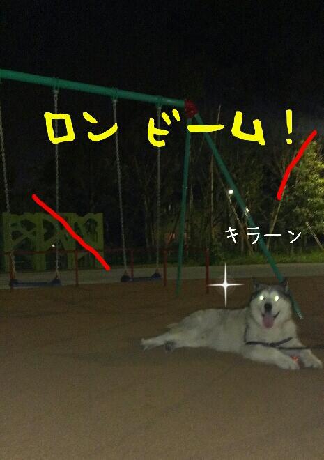 d0241911_1143231.jpg