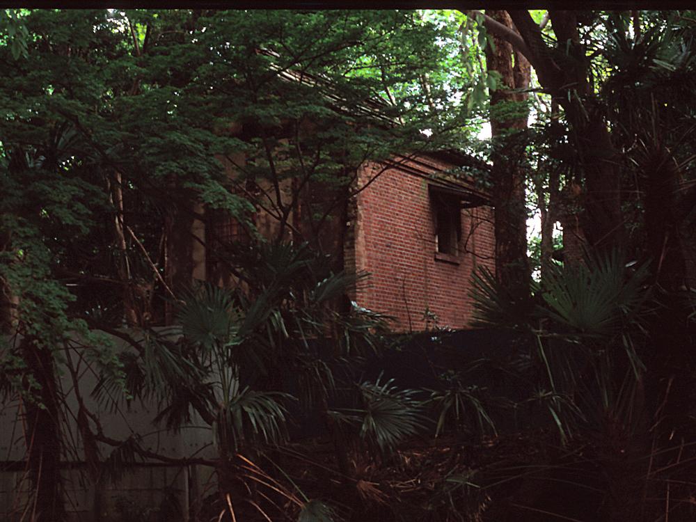 フィルムカメラで巡る坂川(後編) ペンタックスME-Super とシグマDP2xで_c0223825_22222715.jpg