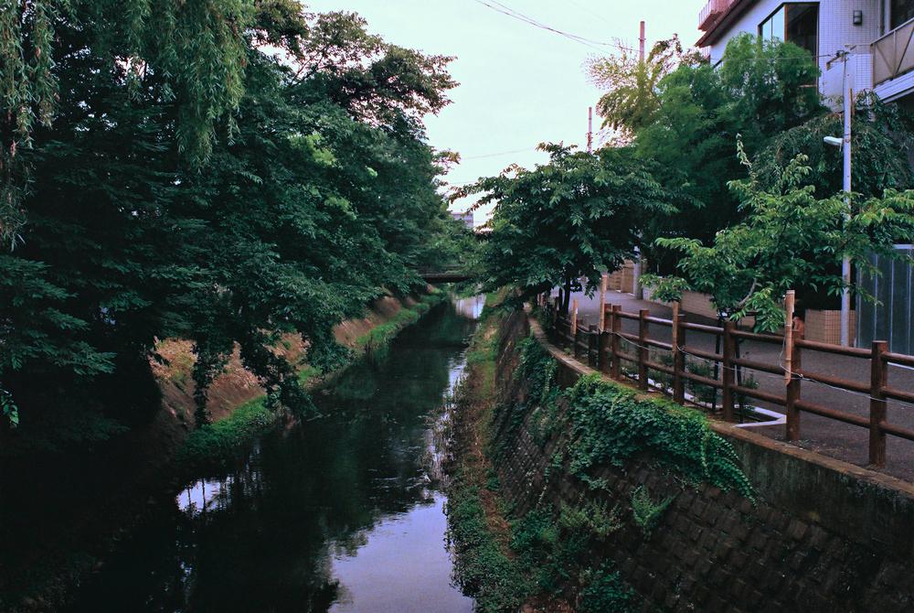フィルムカメラで巡る坂川(後編) ペンタックスME-Super とシグマDP2xで_c0223825_23502730.jpg