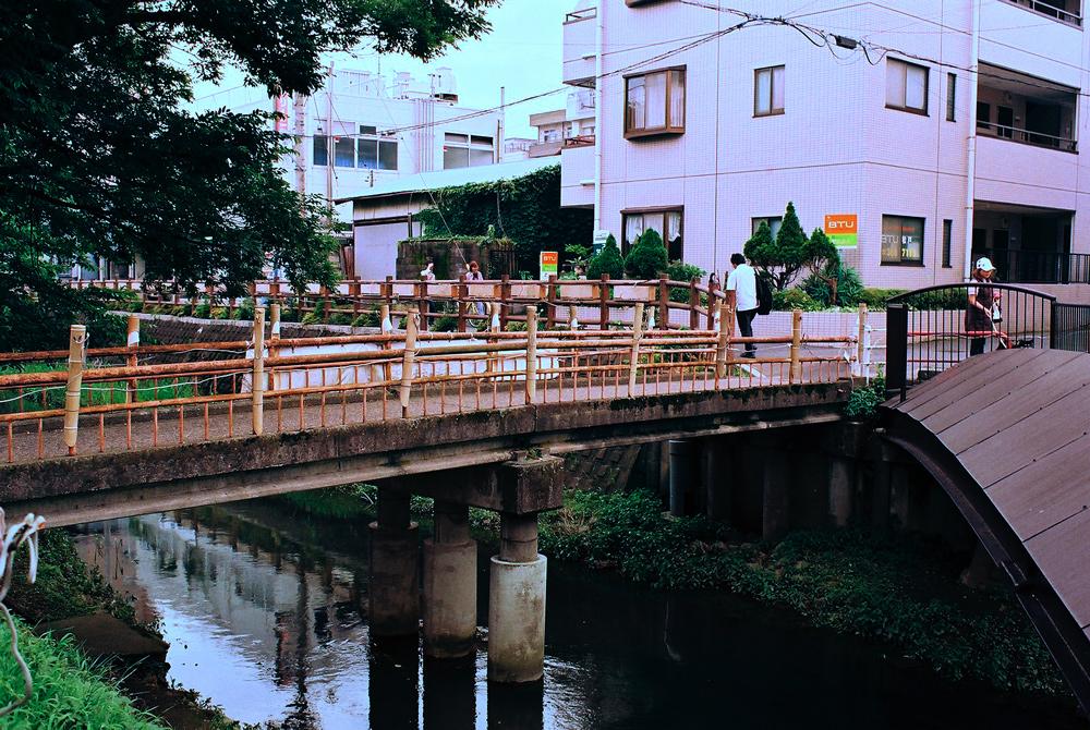 フィルムカメラで巡る坂川(後編) ペンタックスME-Super とシグマDP2xで_c0223825_2395272.jpg