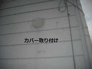 f0031037_2021639.jpg