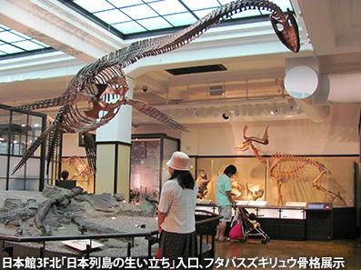 全国アクセス・マニア集会 in 東京(4)国立科学博物館_c0167961_18285036.jpg