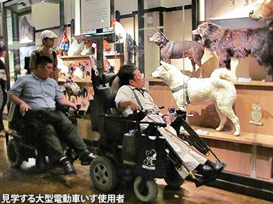 全国アクセス・マニア集会 in 東京(4)国立科学博物館_c0167961_18295556.jpg