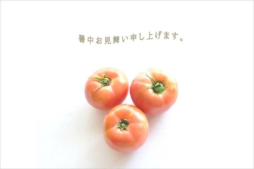 f0198771_005519.jpg