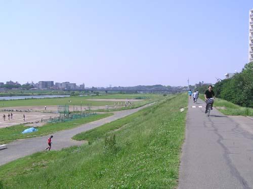 多摩川周辺で見たこと_f0211178_15174821.jpg