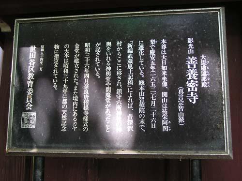 多摩川周辺で見たこと_f0211178_15181997.jpg