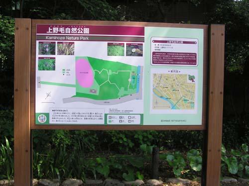 多摩川周辺で見たこと_f0211178_15185154.jpg
