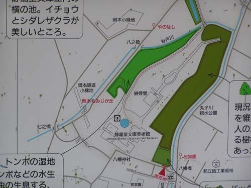 多摩川周辺で見たこと_f0211178_15185944.jpg