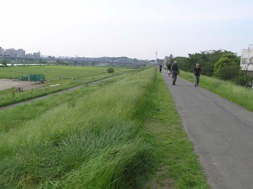 多摩川周辺で見たこと_f0211178_15194814.jpg