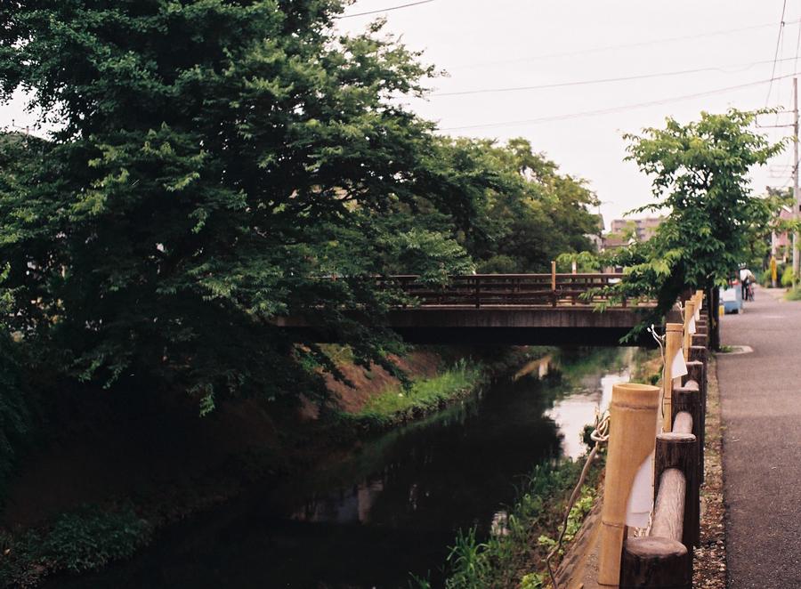フィルムカメラで巡る坂川(後編) ペンタックスME-Super とシグマDP2xで_c0223825_026852.jpg
