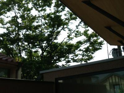 庇・ひさしの家_c0124828_16212796.jpg
