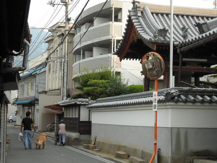 寺前の道_f0130879_23424973.jpg