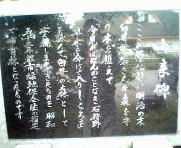 白井の森_f0078286_850052.jpg