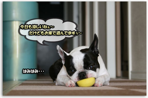 a0086698_20112741.jpg