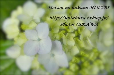 d0065928_14434633.jpg