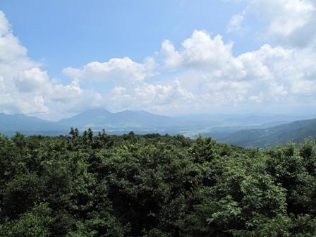 [ レポート ]  『 第11回 ふるさと岡山の森を訪ねる旅 』_b0211845_11352882.jpg