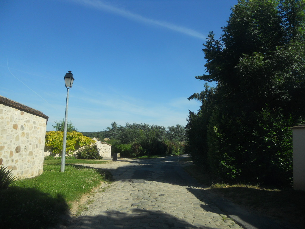 パリ郊外の農園で_a0066869_16584934.jpg