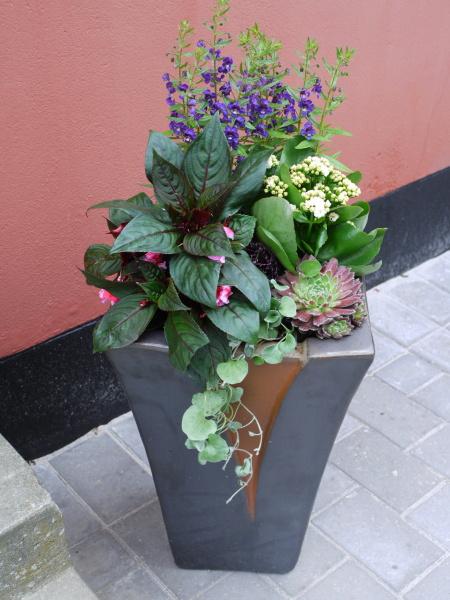 来客があるといいですね・・・・・お家がきれいになります・・花の力もすごい!!_b0137969_15441936.jpg