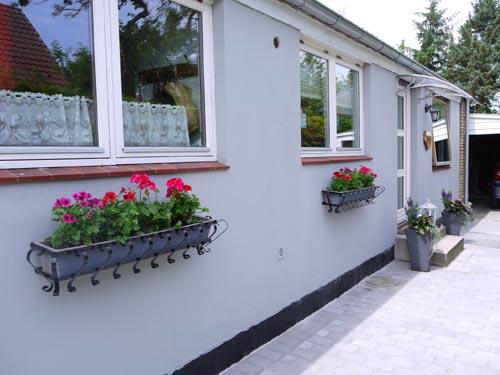 来客があるといいですね・・・・・お家がきれいになります・・花の力もすごい!!_b0137969_1575269.jpg