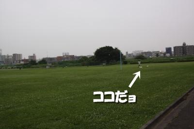 b0053973_1862965.jpg