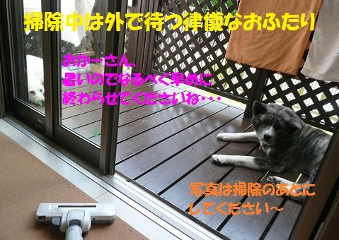 f0121712_14471537.jpg