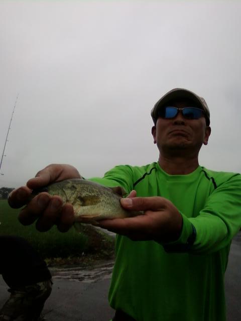 第4回 TBCスキルアップミーティング & バス釣り大会_a0153216_217969.jpg