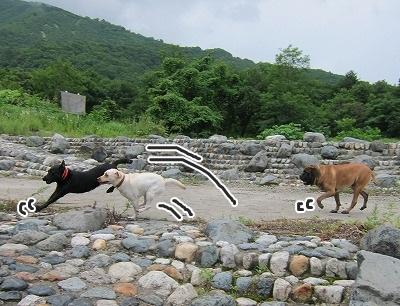 白馬旅行 2012夏の巻 1_e0192217_18432253.jpg