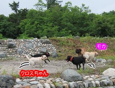 白馬旅行 2012夏の巻 1_e0192217_18472724.jpg