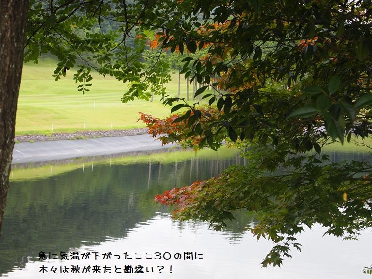f0224347_175096.jpg