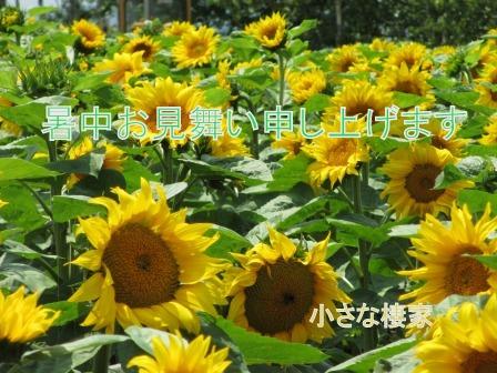 a0243064_21145137.jpg