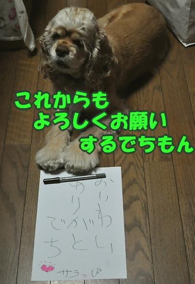 b0067012_2332153.jpg