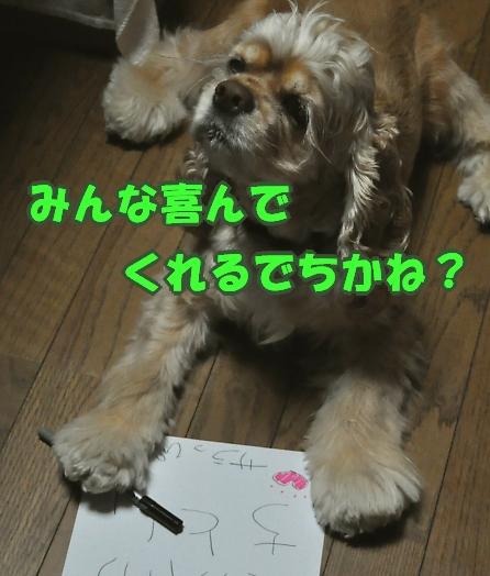 b0067012_2335166.jpg